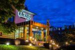 Отель Оскар - gallery-image8
