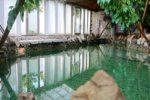 Отель Хижина СПА - gallery-image4